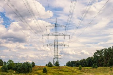 landscape with Electricity poles