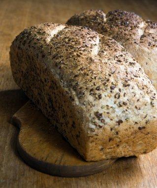 Ecological bread stock vector