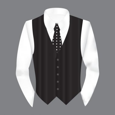 Vest, shirt and tie in business style