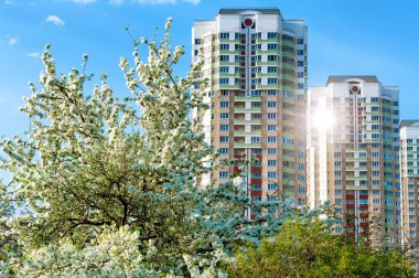 new apartment buildings in spring time