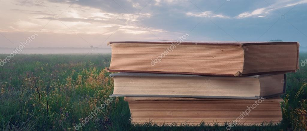 Books on grass outdoors