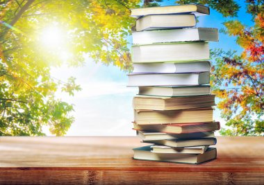 A stack of books on table on natural background stock vector