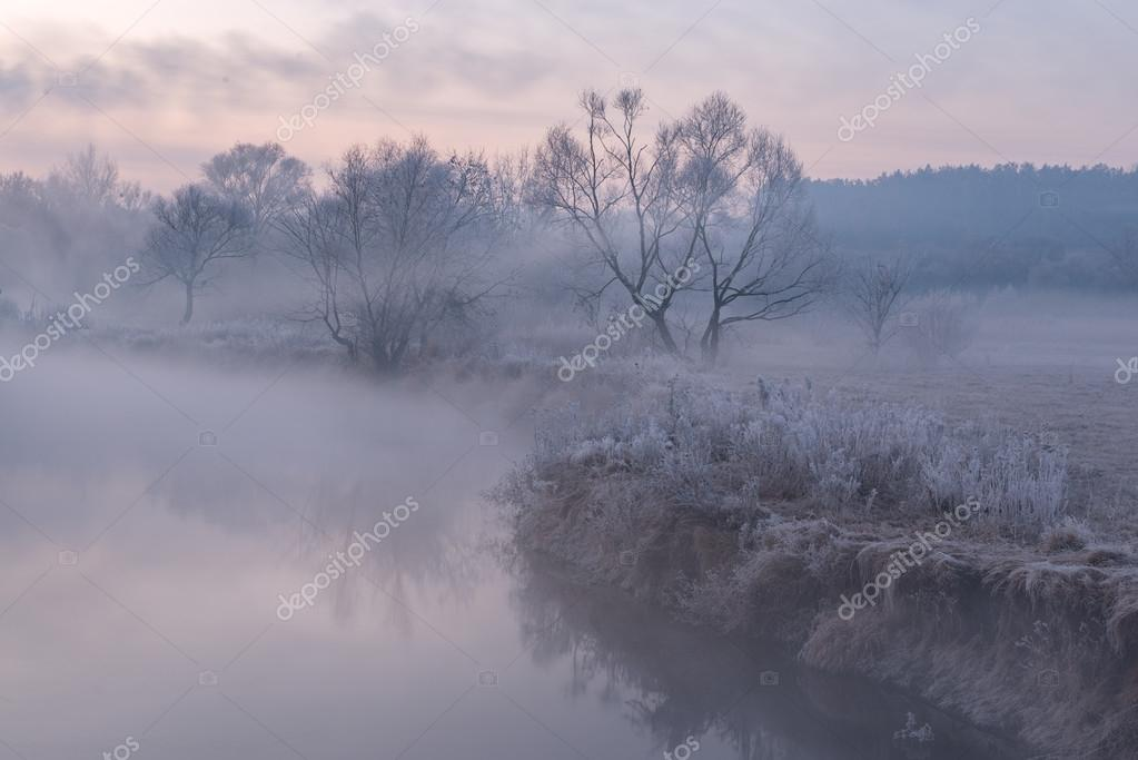 cold morning near the lake