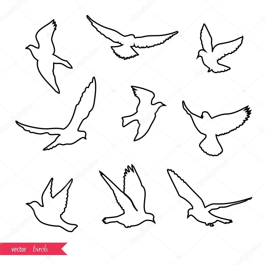 Set of sketches of flying swallows stock vector illustration - Set Of Flying Birds Silhouettes Vector Illustration Vector By Mrs_opossum