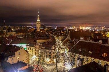 Night view of the city from the Kohtuotsa observation deck. Tallinn. Estonia (2017)