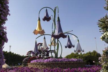 Flower Park in Dubai (Dubai Miracle Garden). United Arab Emirates.