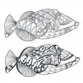 Fényképek Kézzel rajzolt stilizált tengeri hal