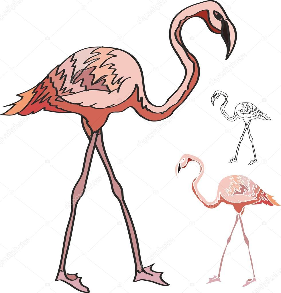 Disegno di fenicotteri rosa vettoriali stock son 62040367 for Scarica clipart