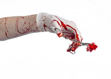 Surgery and medicine theme: doctor bloody hand in glove holding a bloody surgical clamp with swab and performs surgery on an isolated white background in studio
