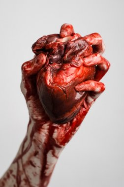 Blood and Halloween theme: terrible bloody hand hold torn bleeding human heart isolated on gray background in studio