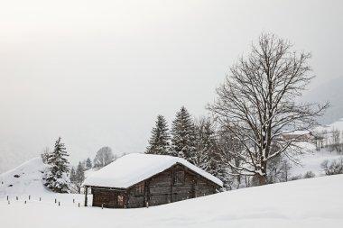 Barn on Snowy Field