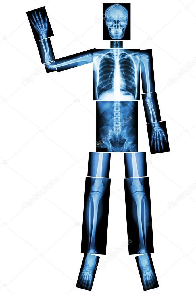 good bye ebola human bone wave the hand whole body head neck