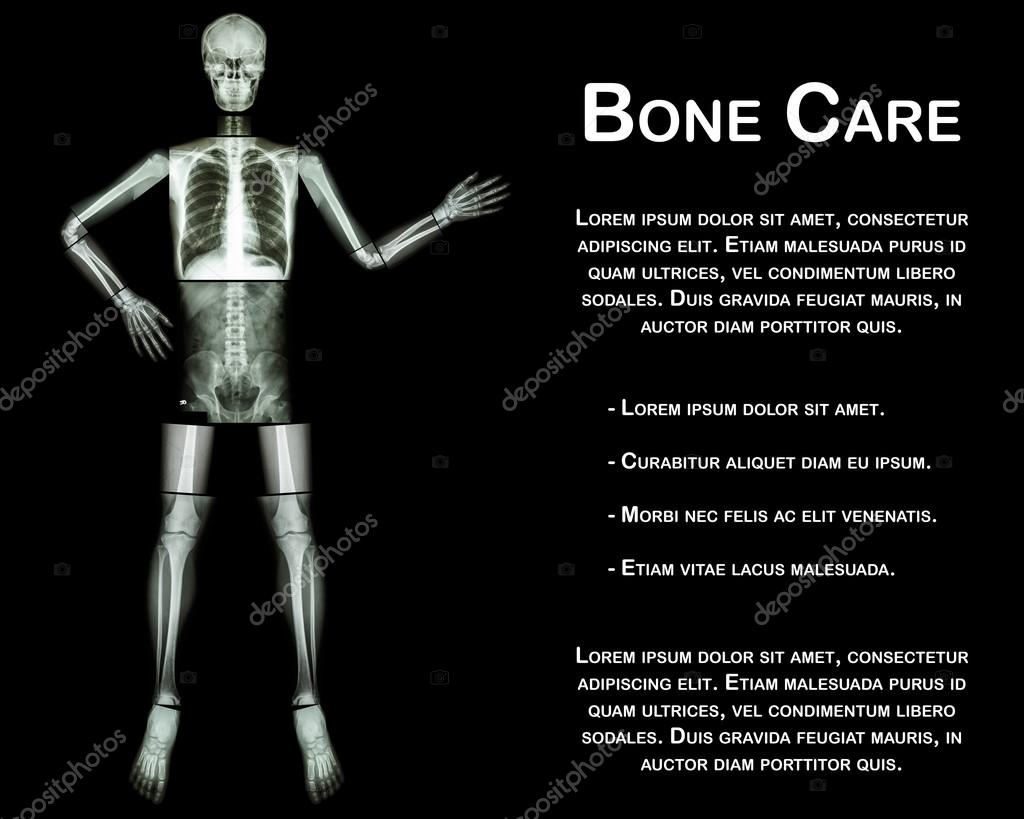 Human skeleton present something whole body head skull neck spine human skeleton present something whole body head skull neck spine shoulder arm elbow forearm wrist hand finger chest thorax heart lung abdomen back ccuart Images