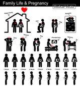 Familienleben während der Schwangerschaft und der fetalen Entwicklung (Schwangere und fetales Wachstum in der Gebärmutter) (Schritt für Schritt) (medizinisches, wissenschaftliches und medizinisches Konzept) (schwarz-weiß, flaches Design, isoliert )