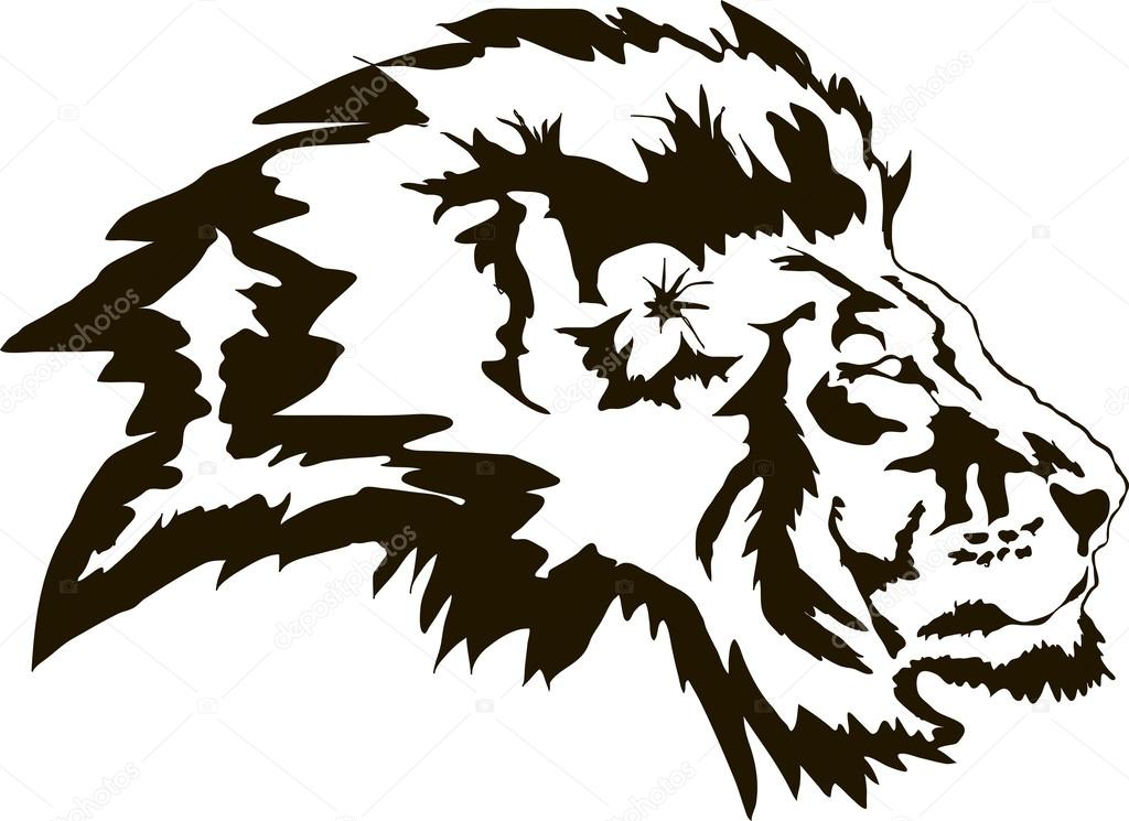 Head of lion in vector format
