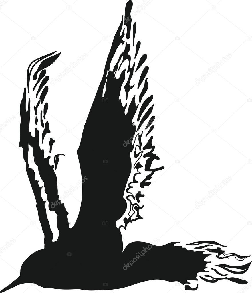 Silhouette Bird Vector