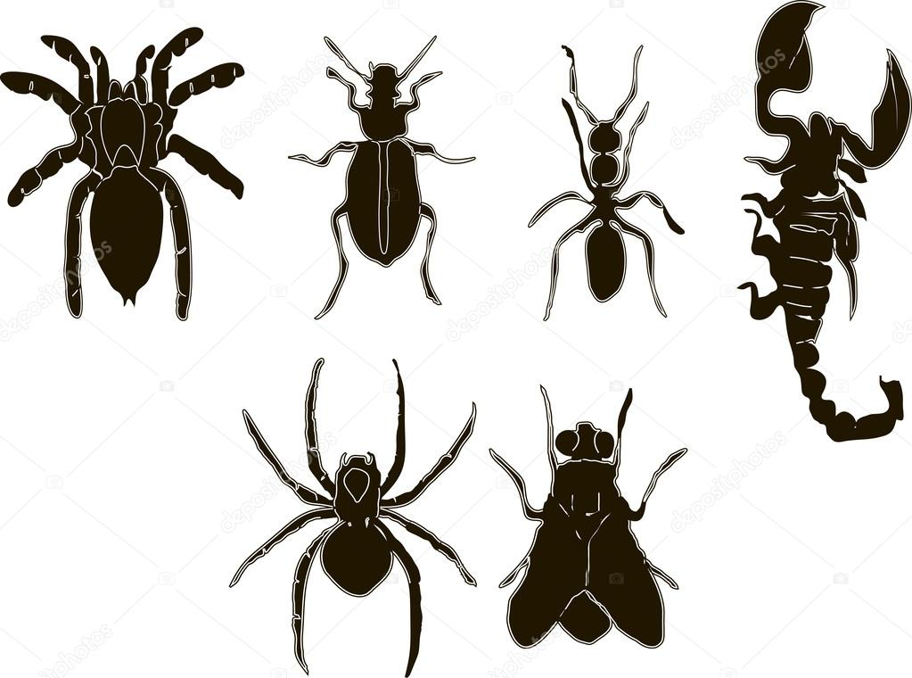 Vector - Insects icons set black and white