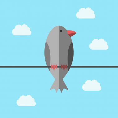 Bird perching on wire