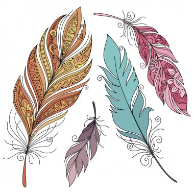 Set of Colored Ornate Feathers