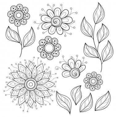 Set of Contour Flowers and Leaves