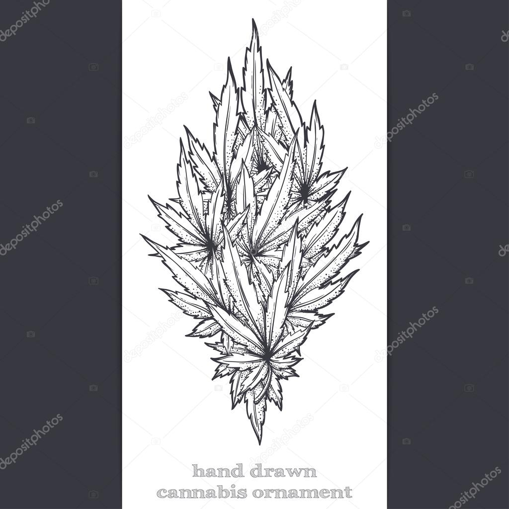 Abstract Ornament of Cannabis Black