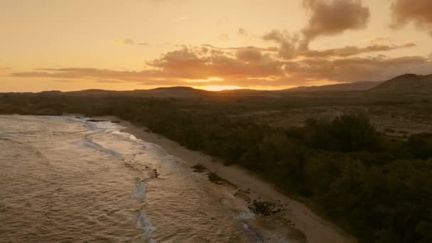 Drone aerial footage of calm ocean waves caressing the beach with tropical forest, golden sunset (Kauai, Hawaii, USA)