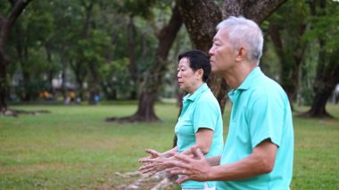 Asian Senior Elderly couple Practice Taichi, Qi Gong exercise ou
