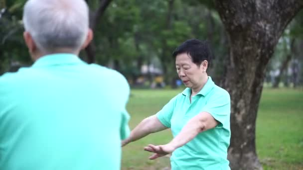 Video of Asian Senior Elderly couple Practice Taichi, Qi Gong exercise outdoor in the park. Abstract love health and nature