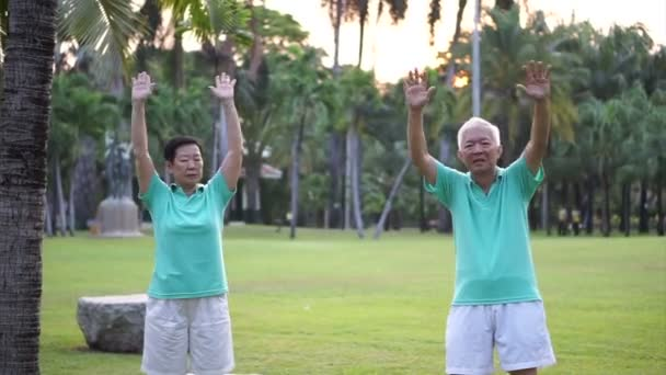 Video of Asian Senior Elderly couple Practice Taichi, Qi Gong exercise  outdoor in the park  Abstract love health and nature