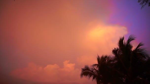 Palm tree siluetu při západu slunce na tropické pláži Koh Rostislav, Thajsko. Pastelové barevné mrak zázemí pro kopírování prostor