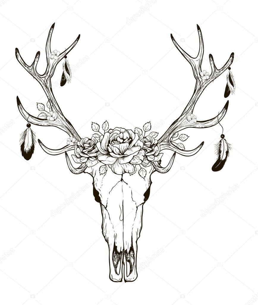 vector cráneo de ciervo — Archivo Imágenes Vectoriales © Lviktoria25 ...