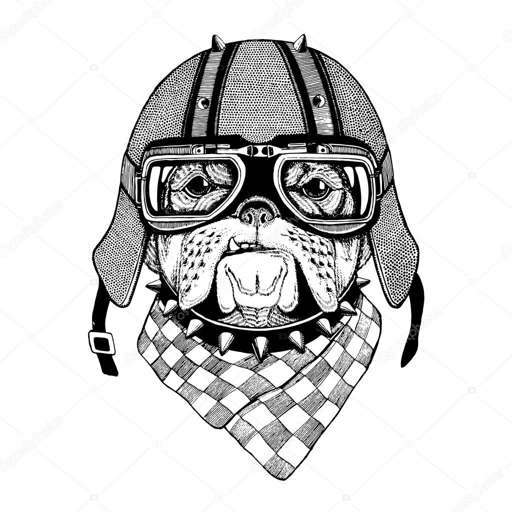 Vintage Vector Images Of Dogs For T Shirt Design For Motorcycle