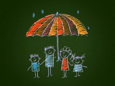The social protection of the family.
