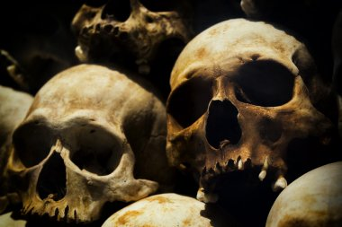 Human Skulls at the Killing Fields of Choeung Ek, Phnom Penh, Cambodia