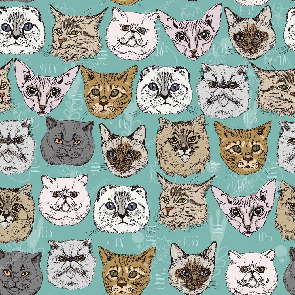 Seamless pattern with cats Siamese, British, Siberian, Persian, Scottish Fold, Maine Coon, Bengal, Sphynx in doodle hipster style.