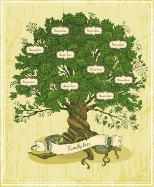 Genealogical tree on old paper background.