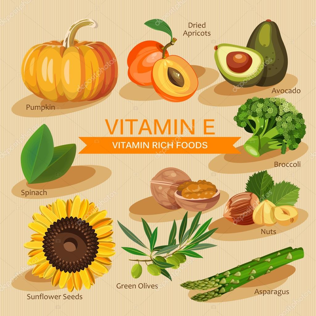 Groups of healthy fruit vegetables meat fish and dairy products groups of healthy foods containing specific vitamins vitamin e vector by tsyhanova workwithnaturefo