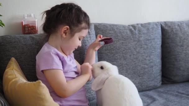 Mosolygó kislány játszik, ölelgeti és eteti a fehér nyulat. Közelről.