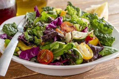 Organic Super Food Vegetarian Salad