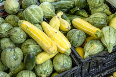 Fresh Organic Fruits and Vegetables at Farmers Market