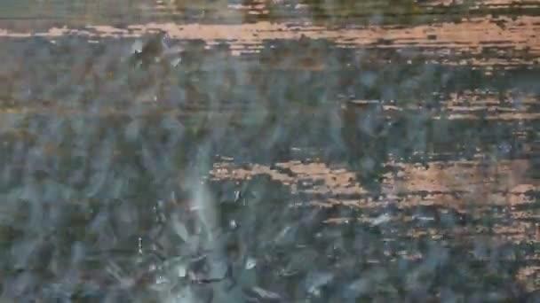 Video B60021957