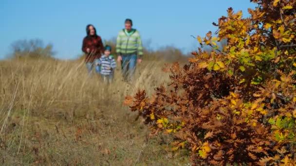 Rodinné procházky v podzimní louce