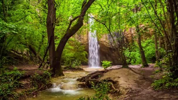 Krásný vodopád v zářivě zeleném lese