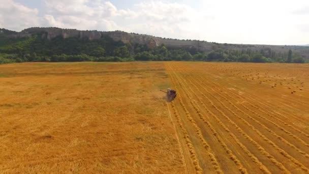 Farma kombajn v zlatém poli