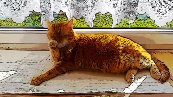 Washing relaxing cartoon cat