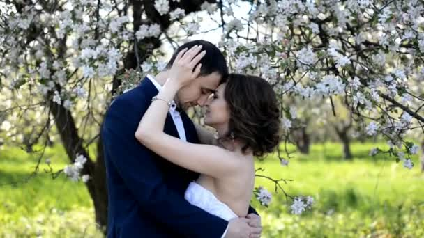 Schöne junge Paar Braut und Bräutigam umarmen und küssen im blühenden Garten