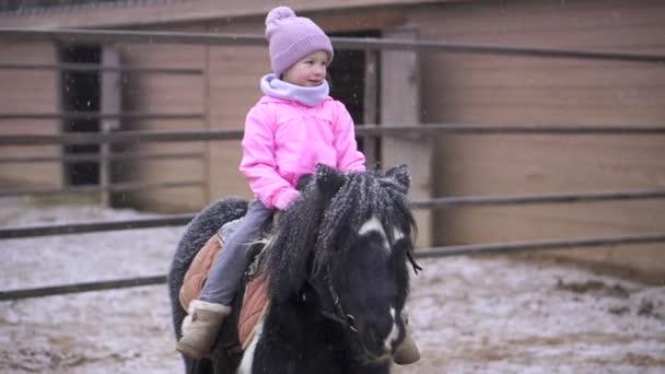 Dítě jede na poníkovi. Holka jezdí na hnědém koni. Dítě na farmě s domácím mazlíčkem
