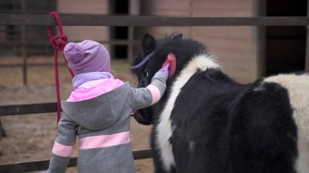 Pferdepflege. Kleine süße Mädchen und Pony. Tier- und Kinderfreundschaft auf Bauernhof und Ranch.