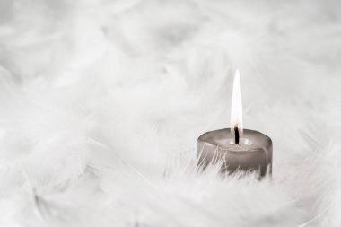 One grey burning candle on white background with feathers.