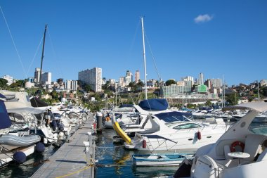 Port or marina of Salvador de Bahia in Brazil.